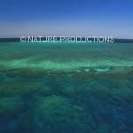 Barriere-de-corail-Australie