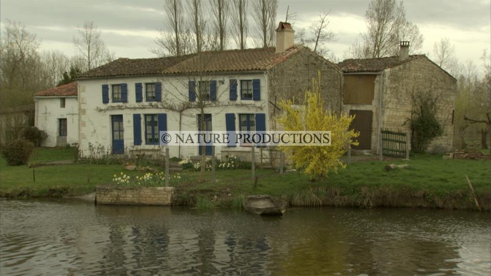 Maison-Marais