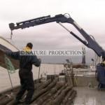 Manoeuvre-bateau