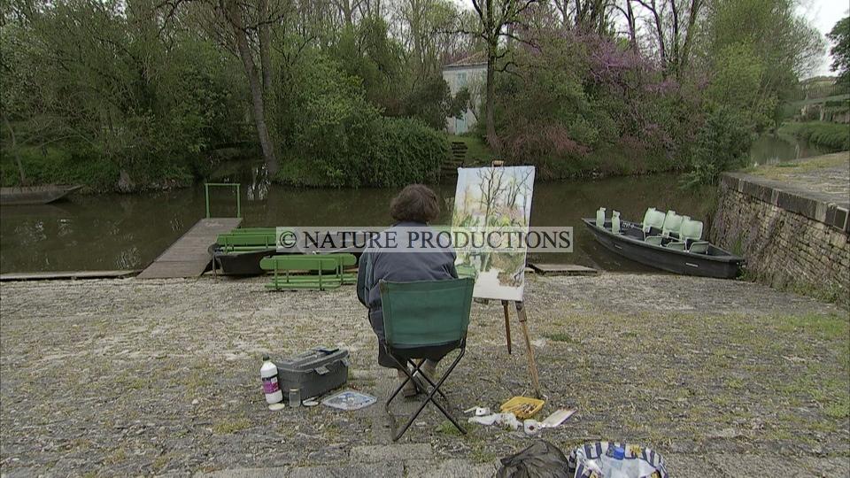 Peintre-Marais