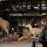Galerie-de-l'évolution Muséum National d'Histoire Naturelle