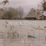 Xynthia-inondation